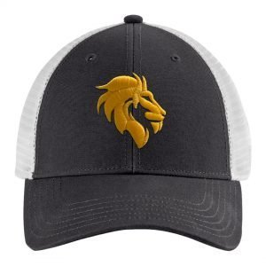 VSA Men's Hat